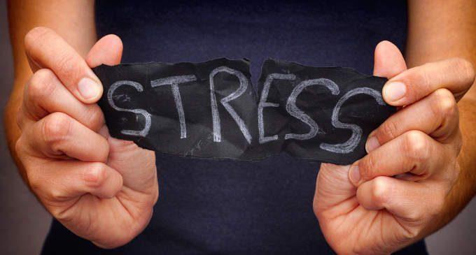 Lo stress può essere dannoso come una cattiva alimentazione
