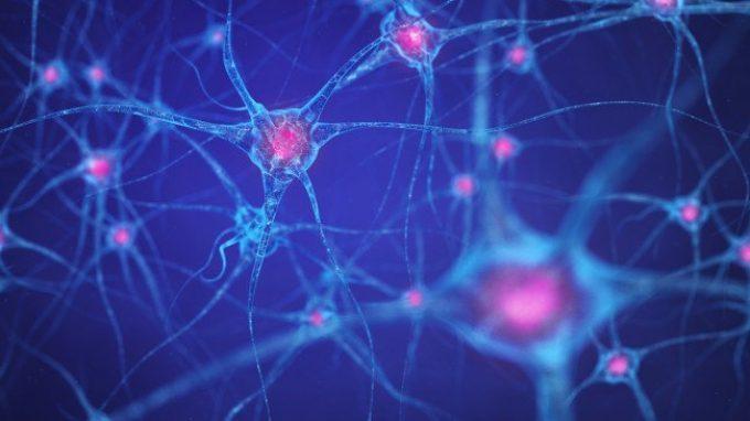 Allopregnanolone: un neurosteroide coinvolto nei disturbi di anoressia e obesità