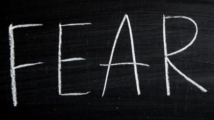 Nuove scoperte sull' apprendimento della paura a livello cerebrale