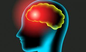 Lobi frontali, corteccia frontale e corteccia prefrontale- Introduzione alla psicologia