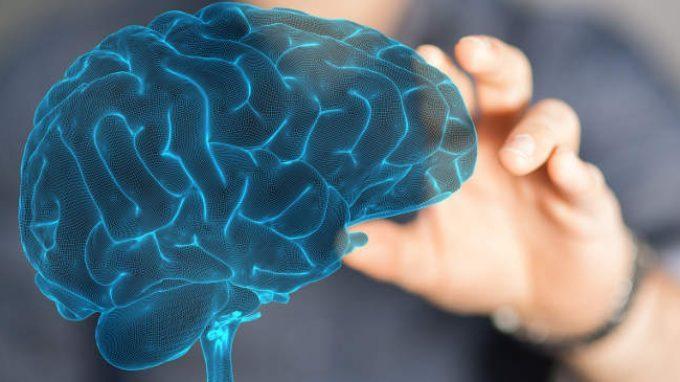 Come risponde l'amigdala alla disuguaglianza economica e il rischio di depressione