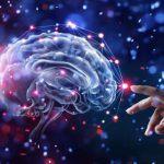 Neuroplasticità: la capacità del cervello di modificarsi in base alle esperienze