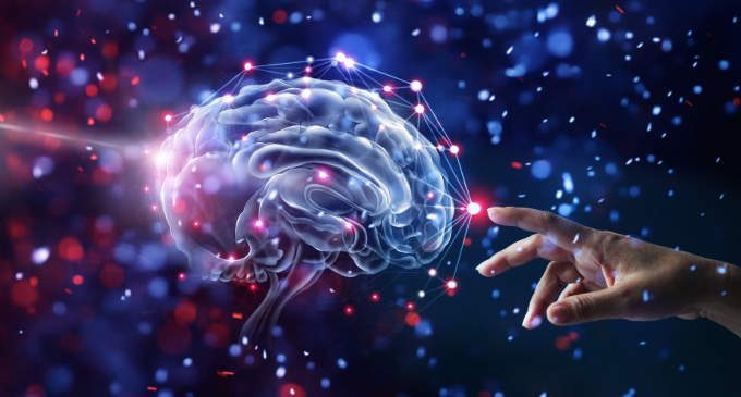 Il dono della neuroplasticità: come si modifica il cervello