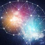 Un algoritmo spiega come avviene l'apprendimento nel cervello umano