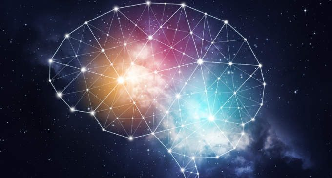 Come apprende il nostro cervello? Adesso lo spiega un algoritmo