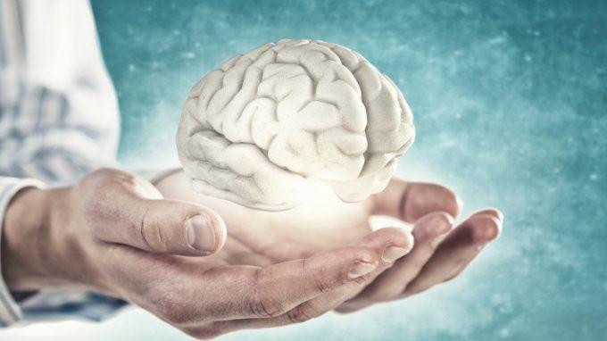 Il futuro della ricerca: modelli cerebrali 3D per studiare il sistema nervoso e sviluppare delle cure per le malattie neurologiche