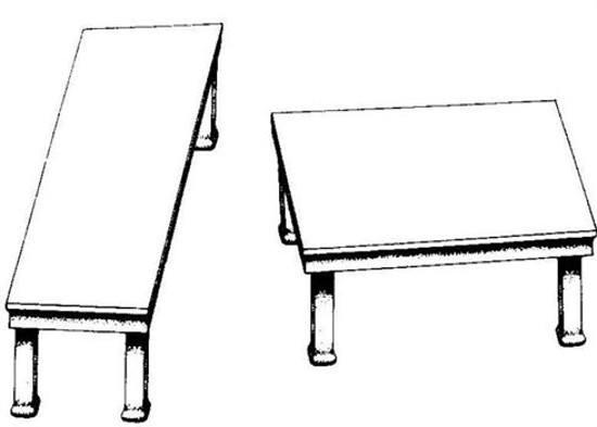 Razionalita nei processi decisionali le scelte sono sempre fatte con logica - tavolo Shepard