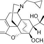 Buprenorfina: dalla terapia del dolore al trattamento della dipendenza da oppiacei