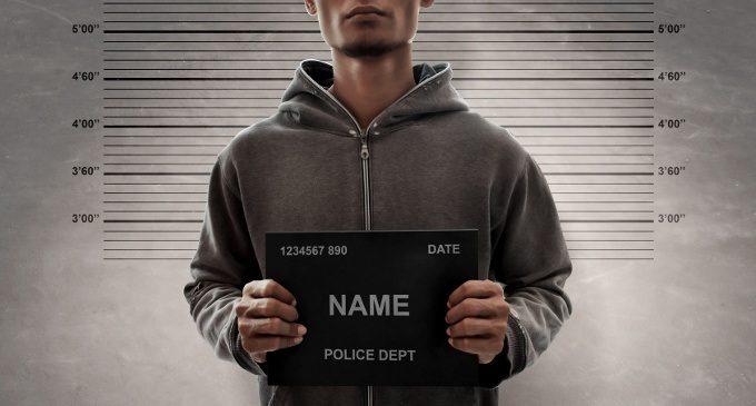 La localizzazione cerebrale del comportamento criminale: i codici del cervello che potrebbero aiutarci nella prevenzione e nel trattamento di condotte antisociali