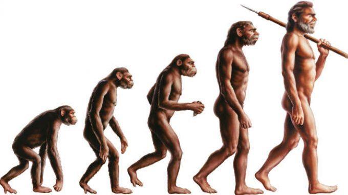 L'auto-addomesticamento come ipotesi dell'evoluzione umana