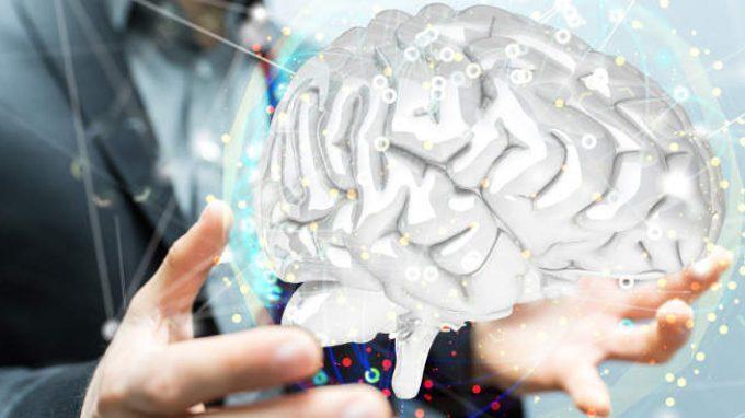 """Un nuovo modello per lo studio del cervello: il """"micro-cervello"""""""