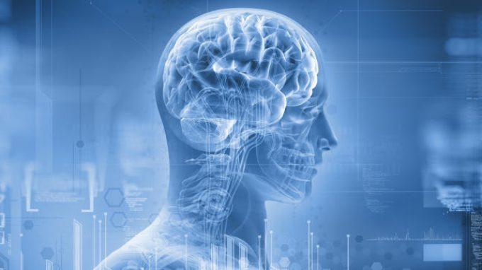 Cosa avviene nel cervello quando muoviamo la testa?