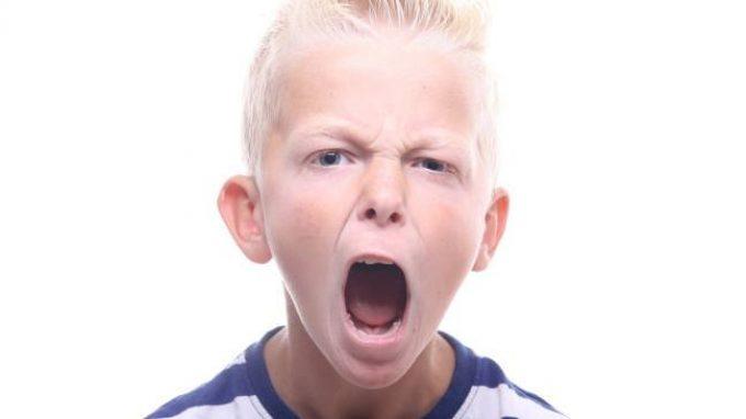 Disturbi del comportamento dirompente: tratti calloso-anemozionali e basi neurali