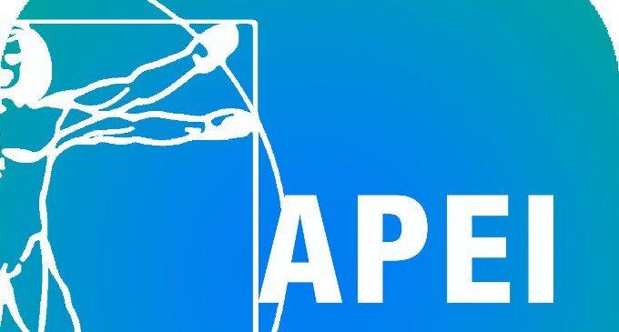 Il pedagogista e l'educatore a scuola. Intervista all'Associazione Pedagogisti Educatori Italiani (APEI)