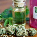 Cannabis: l'uso, l'abuso e il confine tra benefici e danni - Psicologia