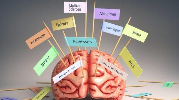I Gangli della base – Introduzione alla Psicologia