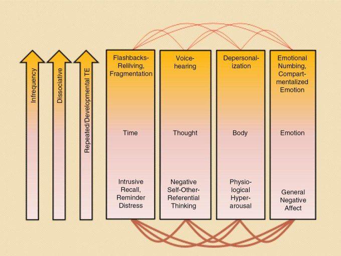 Dissociazione e trauma gli ultimi contributi teorici e la pratica clinica immagine
