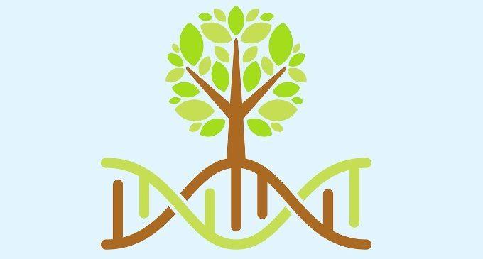La vera forza della psicoterapia: il cambiamento epigenetico