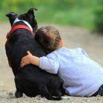 Pet therapy e ADHD: effetti benefici sul trattamento psicoterapico