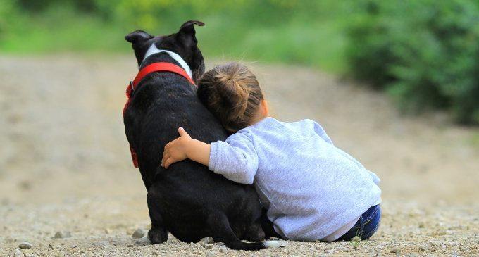 Pet therapy e ADHD: quando la vicinanza di un animale domestico può avere effetti benefici