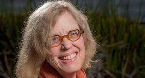 Pat Ogden: come nasce la psicoterapia sensomotoria