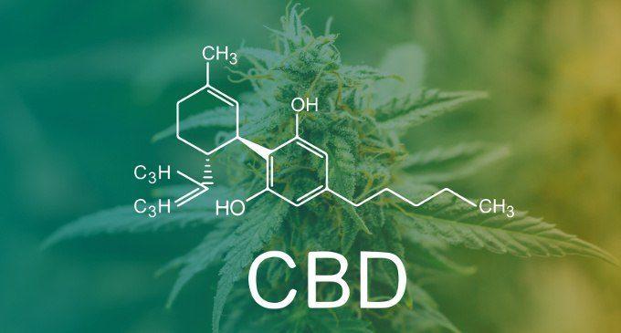 Cannabis: lo stato dell'arte dalla legislazione ai dati relativi all'uso e all'abuso