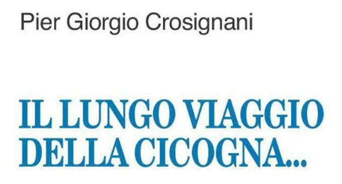 Il lungo viaggio della cicogna (2012) di Pier Giorgio Crosignani – Recensione del libro