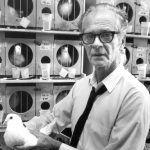 Burrhus Skinner: il padre del condizionamento operante - Psicologia