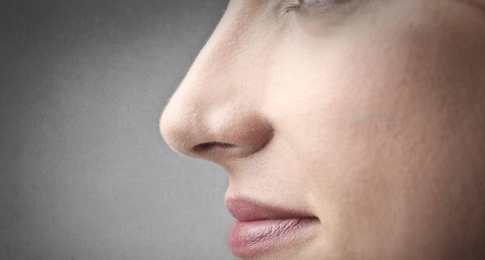 Inibizione, controllo degli impulsi e olfatto