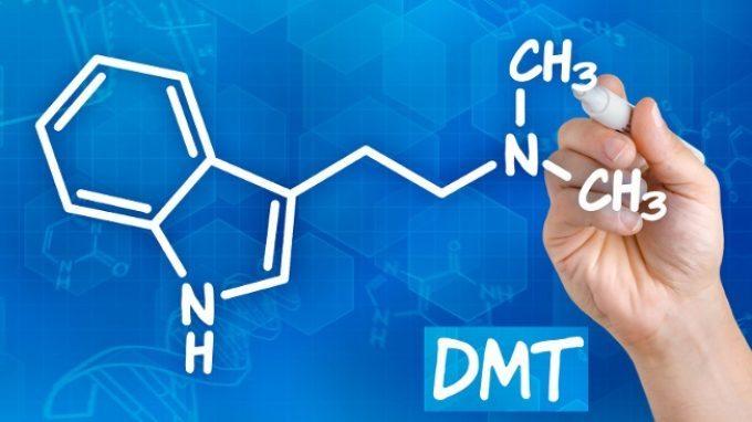 Le Triptamine – Introduzione alla Psicologia
