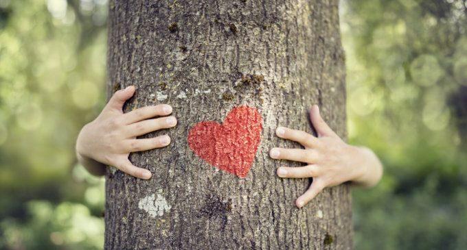 Genitorialità e neuroscienze: gli abbracci che danno nutrimento