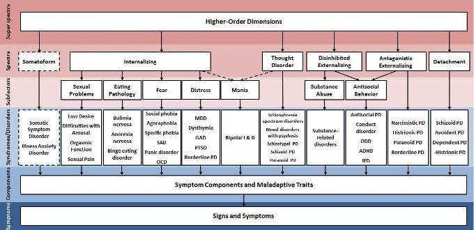 Tassonomia gerarchica della patologia un nuovo modo di concettualizzare immagine1
