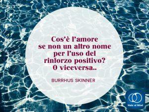 Skinner - Che cos'è l'amore?