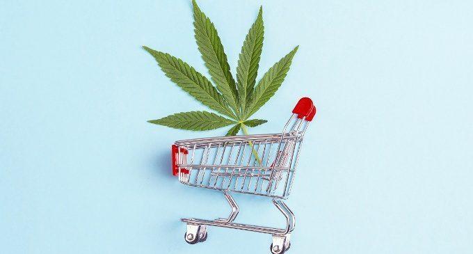All'indomani della sentenza della Corte di Cassazione sull'uso personale (compreso il fumo) della cannabis light: il parere di un esperto