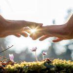 Attaccamento nelle adozioni: la costruzione del legame adottivo