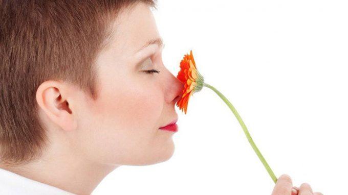 Il ruolo dell'olfatto nella relazione affettiva