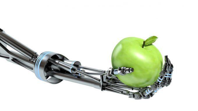 Sentire osservando, osservare sentendo nella robotica