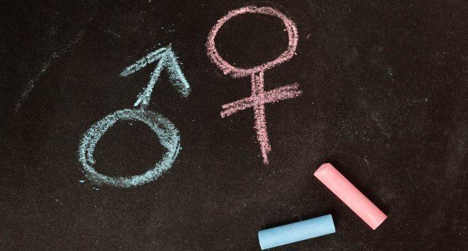Stereotipi di genere, ruolo sociale e scelte professionali