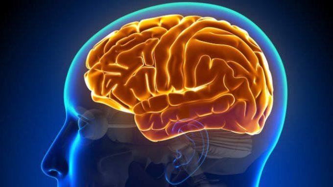 Trauma cranico: deficit cognitivi e comportamentali