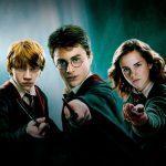 Harry Potter: l'analisi della storia di vita del giovane mago in chiave LIBET