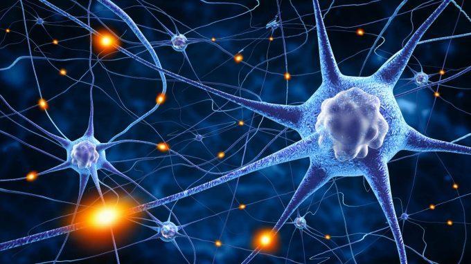 """Alla scoperta del neurone: dalla """"reazione nera"""" di Golgi alla sinapsi di Sherrington"""