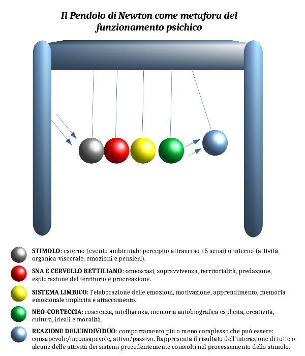 Pendolo di Newton l'analogia con il funzionamento della mente umana