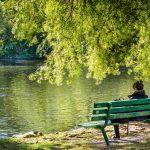 Silenzio e natura: i benefici psicologici di questi elementi combinati
