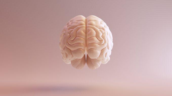 Plasticità cerebrale: quali i possibili effetti degli psicofarmaci sul cervello-mente?