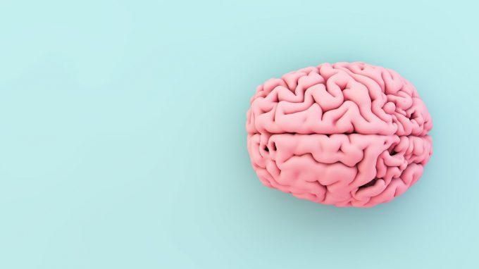 Il cervello adolescente: tra fragilità e potenzialità