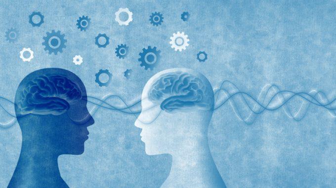 Interazione sociale e sincronizzazione corticale: cervelli sulla stessa lunghezza d'onda