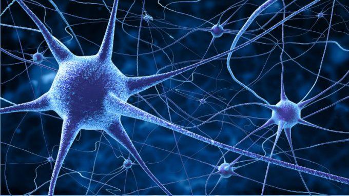 SARS-CoV-2 e danno neurologico