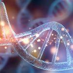 Epigenetica e trasmissione transgenerazionale del trauma - Psicologia