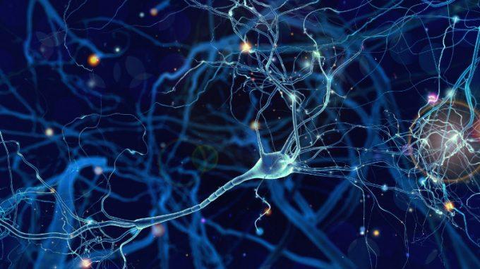 La Deep Brain Stimulation nel Parkinson