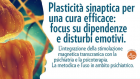 Plasticità sinaptica per una cura efficace: focus su dipendenze e disturbi emotivi – VIDEO